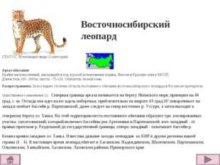 СТАТУС. Исчезающие виды (I категория)  Ареал обитания Крайне малочисленный