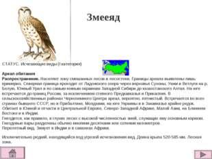 Змееяд СТАТУС. Исчезающие виды (I категория)  Ареал обитания Распространение