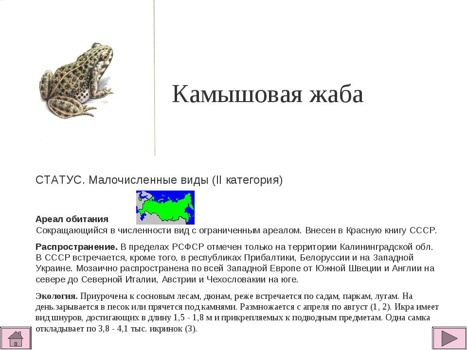 Камышовая жаба  СТАТУС. Малочисленные виды (II категория)  Ареал обитания С...