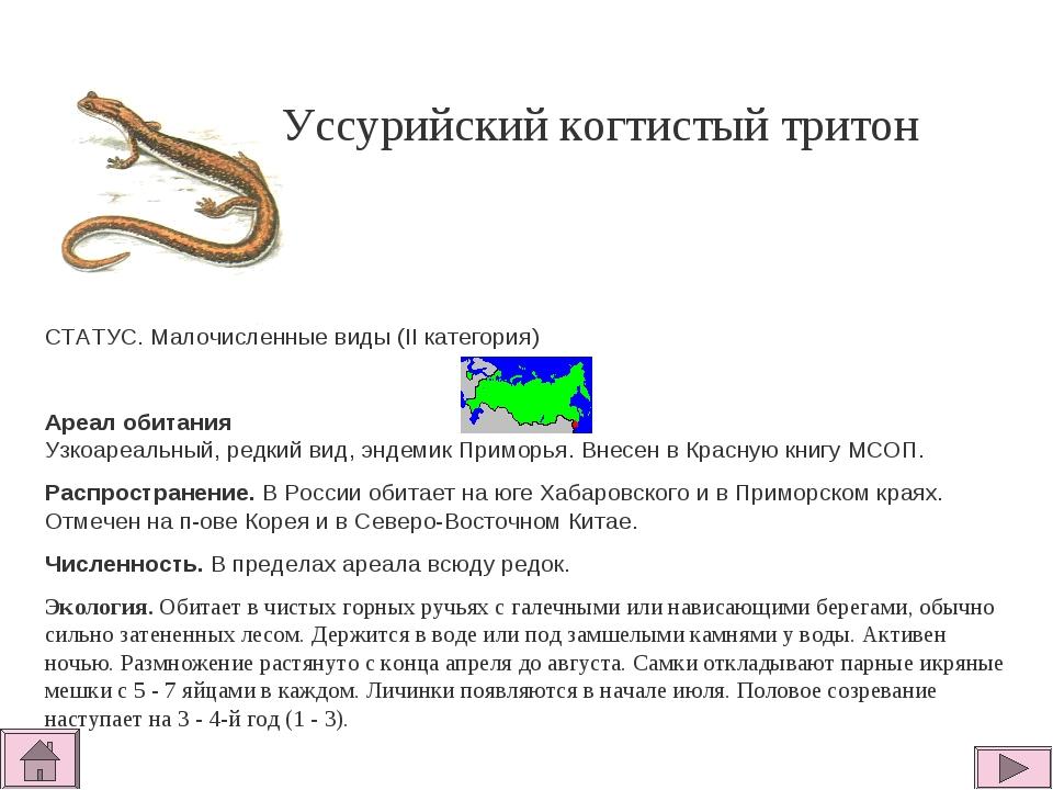 Уссурийский когтистый тритон СТАТУС. Малочисленные виды (II категория)  Ареа...
