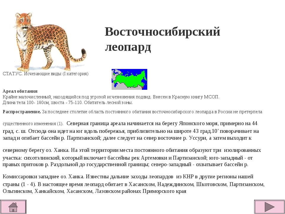 СТАТУС. Исчезающие виды (I категория)  Ареал обитания Крайне малочисленный...