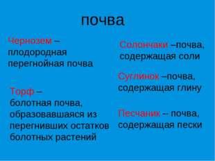 почва Чернозем – плодородная перегнойная почва Торф – болотная почва, образов