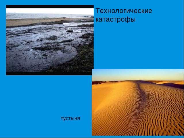 Технологические катастрофы пустыня