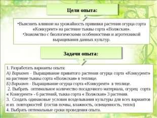 1. Разработать варианты опыта: А) Вариант - Выращивание привитого растения ог