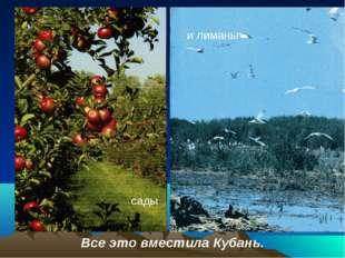 сады и лиманы - Все это вместила Кубань. сады
