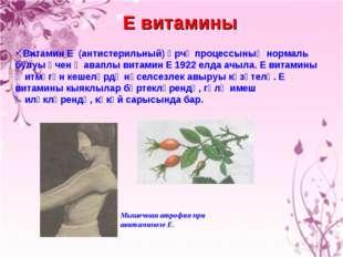 Е витамины Витамин Е (антистерильный) Үрчү процессының нормаль булуы өчен җав