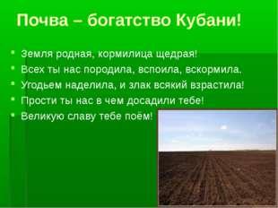 Почва – богатство Кубани! Земля родная, кормилица щедрая! Всех ты нас породил