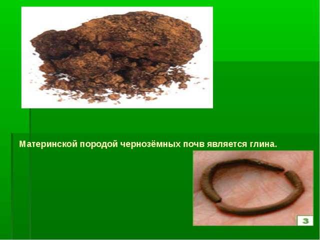 Материнской породой чернозёмных почв является глина.