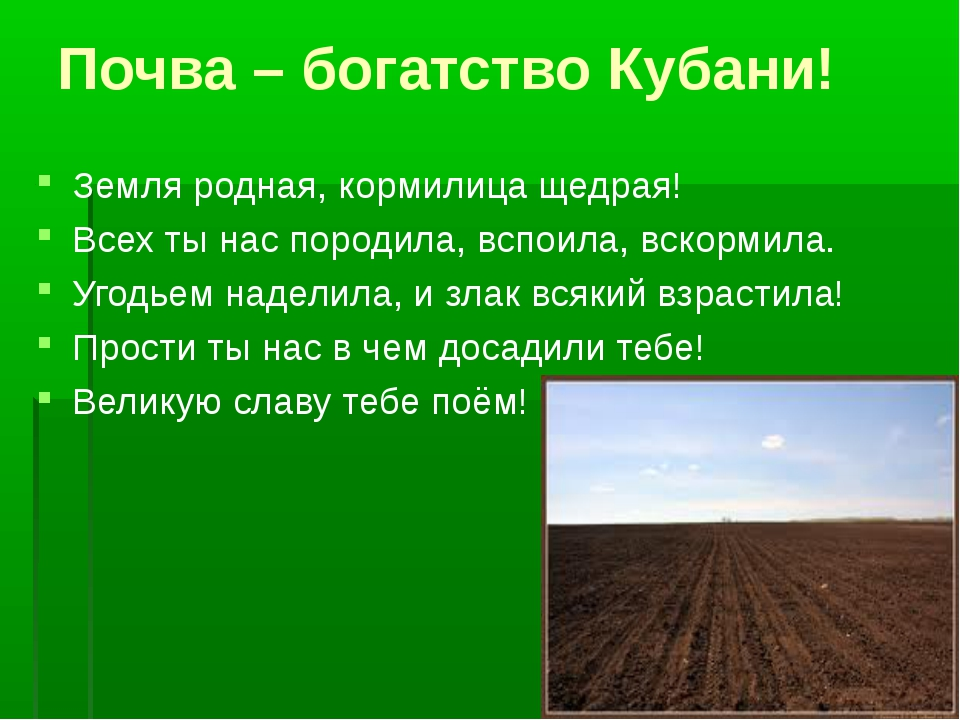 Почва – богатство Кубани! Земля родная, кормилица щедрая! Всех ты нас породил...