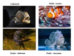 Саблезуб Рыбы - бабочки Рыба - лягушка Рыба - клоун