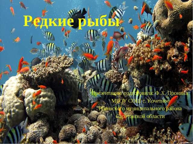 Редкие рыбы Презентацию подготовила: Ф.Х. Пронина МБОУ СОШ с. Кочетное Ровенс...