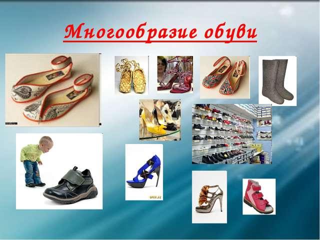 Многообразие обуви