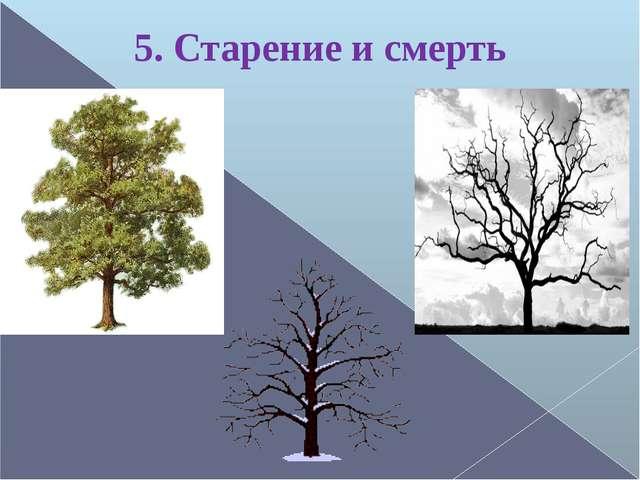 5. Старение и смерть
