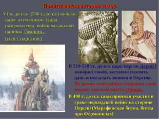 Политическая история саков VI в. до н.э. (530 г.до н.э.) войско царя ахеменид