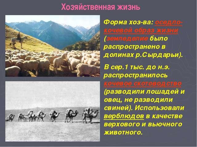 Хозяйственная жизнь Форма хоз-ва: оседло-кочевой образ жизни (земледелие был...