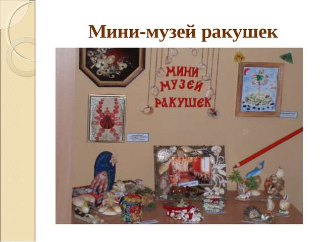 Мини-музей ракушек
