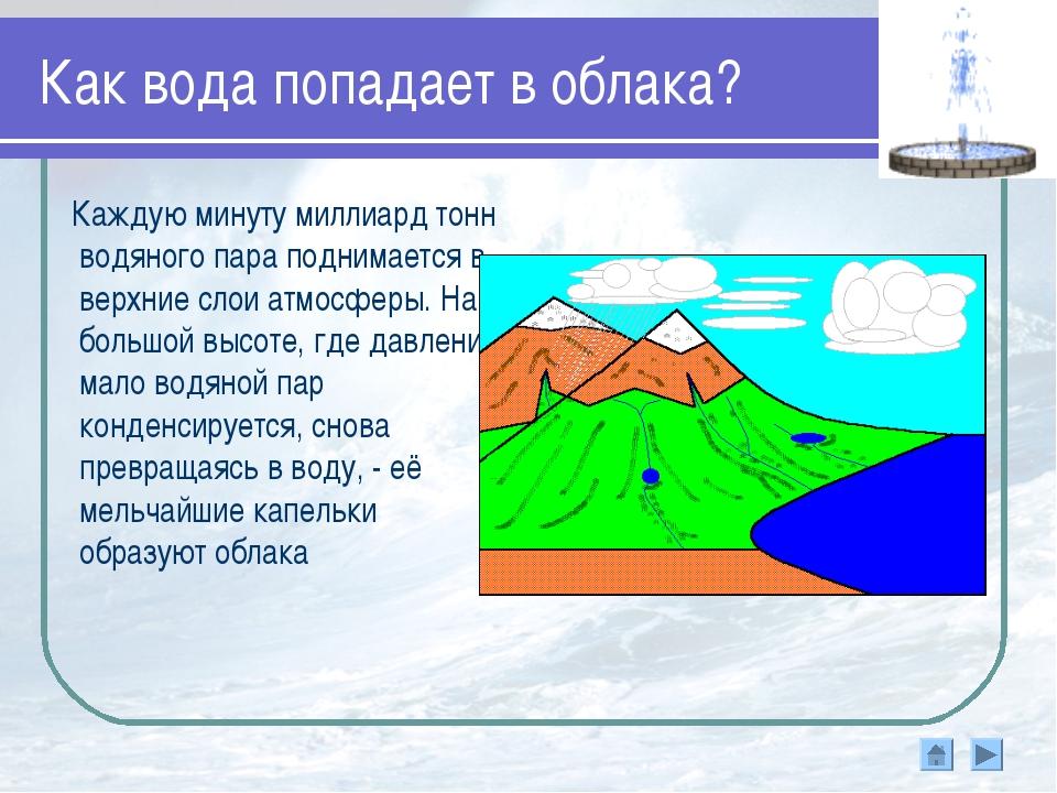 Как вода попадает в облака? Каждую минуту миллиард тонн водяного пара поднима...