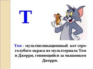 Т Том - мультипликационный кот серо-голубого окраса из мультсериала Том и Дже