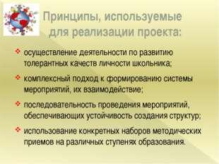 Принципы, используемые для реализации проекта: осуществление деятельности по