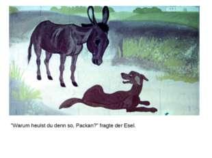 """""""Warum heulst du denn so, Packan?"""" fragte der Esel."""