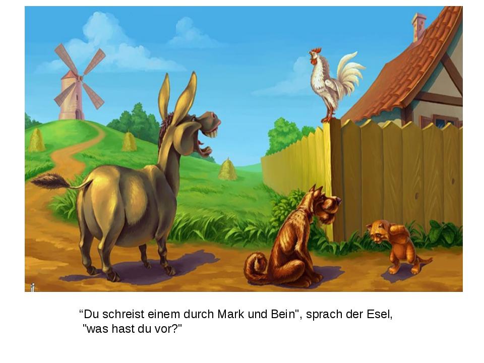 """""""Du schreist einem durch Mark und Bein"""", sprach der Esel, """"was hast du vor?"""""""