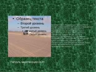 Патруль миротворцев ООН В соответствии с Федеральным Законом РФ «О порядке пр
