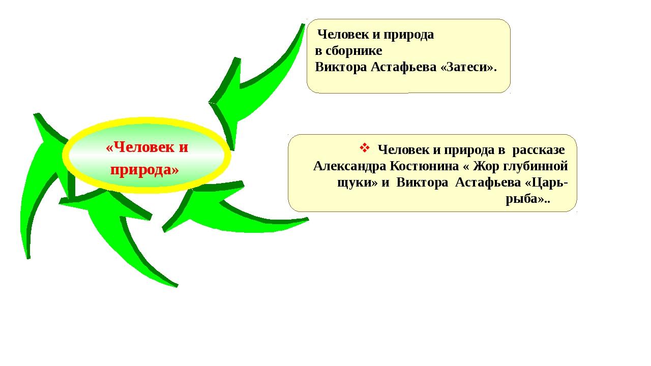 Человек и природа в сборнике Виктора Астафьева «Затеси». Человек и природа в...