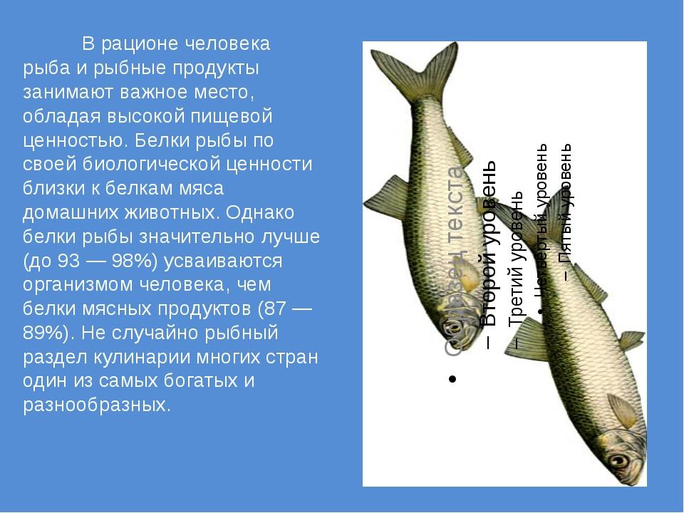 В рационе человека рыба и рыбные продукты занимают важное место, обладая в...