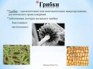 Грибки – одноклеточные или многоклеточные микроорганизмы растительного происх
