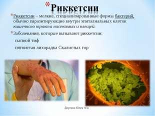 Риккетсии– мелкие, специализированные формы бактерий, обычно паразитирующие