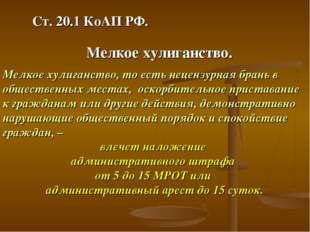 Ст. 20.1 КоАП РФ. Мелкое хулиганство. Мелкое хулиганство, то есть нецензурная