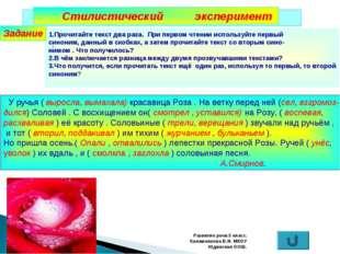Развитие речи.5 класс. Калашникова В.И. МКОУ Юдинская ООШ. Стилистический экс