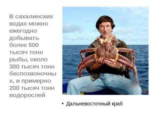 Дальневосточный краб В сахалинских водах можно ежегодно добывать более 500 т