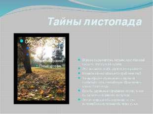 Тайны листопада Вода не поднимается к листьям, идет обратный процесс- спускае
