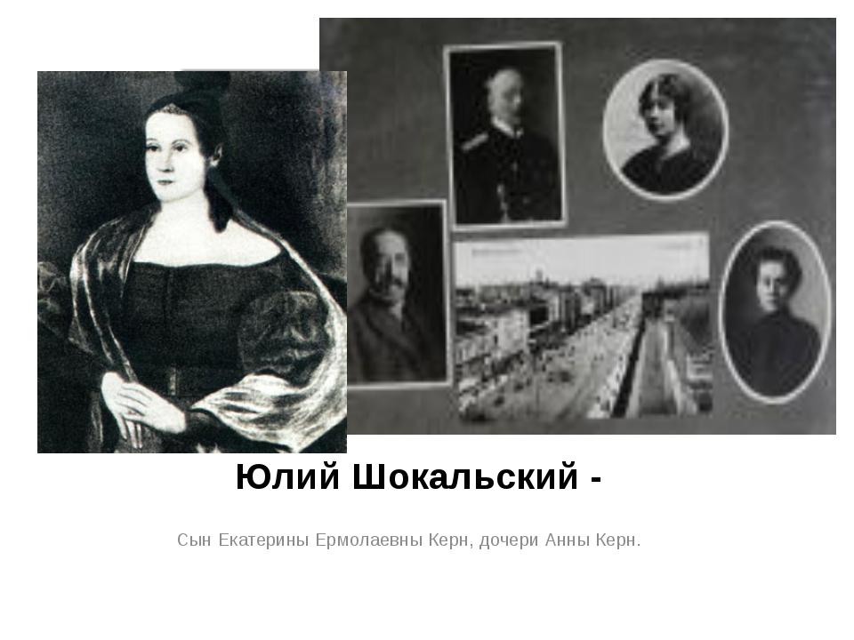 Юлий Шокальский - Сын Екатерины Ермолаевны Керн, дочери Анны Керн.