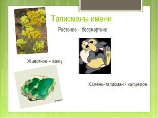 Растение – бессмертник Животное – заяц Камень-талисман - халцедон Талисманы