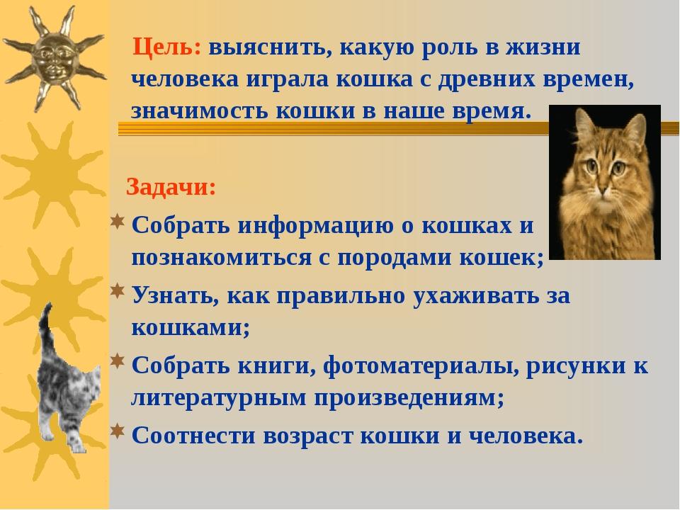 Цель: выяснить, какую роль в жизни человека играла кошка с древних времен, з...