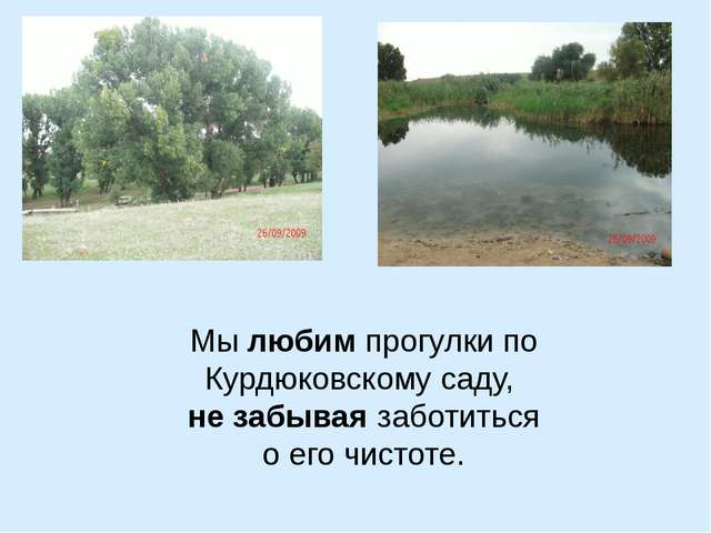 Мы любим прогулки по Курдюковскому саду, не забывая заботиться о его чистоте.