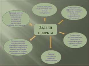 Задачи проекта Проанализировать педагогическую, методическую литературу и нор