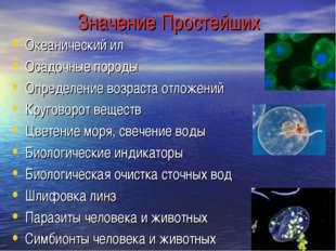 Значение Простейших Океанический ил Осадочные породы Определение возраста отл