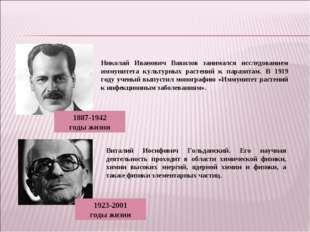 Николай Иванович Вавилов занимался исследованием иммунитета культурных растен