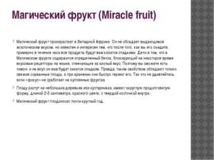 Магический фрукт (Miracle fruit) Магический фрукт произрастает в Западной Афр