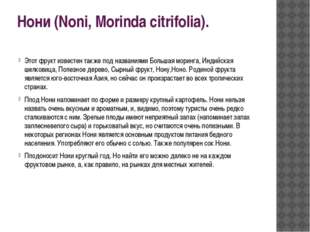 Нони (Noni, Morinda citrifolia). Этот фрукт известен также под названиями Бол