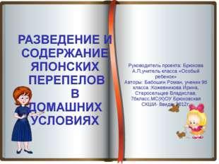 Руководитель проекта: Брюхова А.П,учитель класса «Особый ребенок» Авторы: Ба