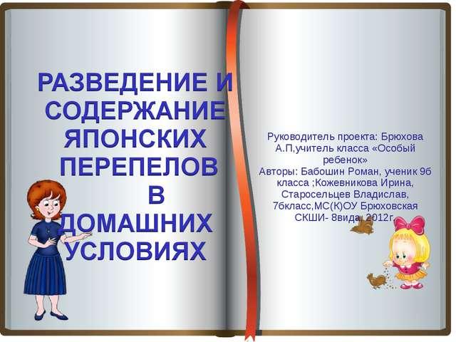 Руководитель проекта: Брюхова А.П,учитель класса «Особый ребенок» Авторы: Ба...