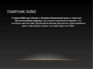 ПАМЯТНИК ЛАЙКЕ 11 апреля 2008 года в Москве на Петровско-Разумовской аллее на