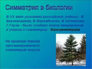 В XX веке усилиями российских учёных - В Беклемишева, В Вернадского, В Алпато