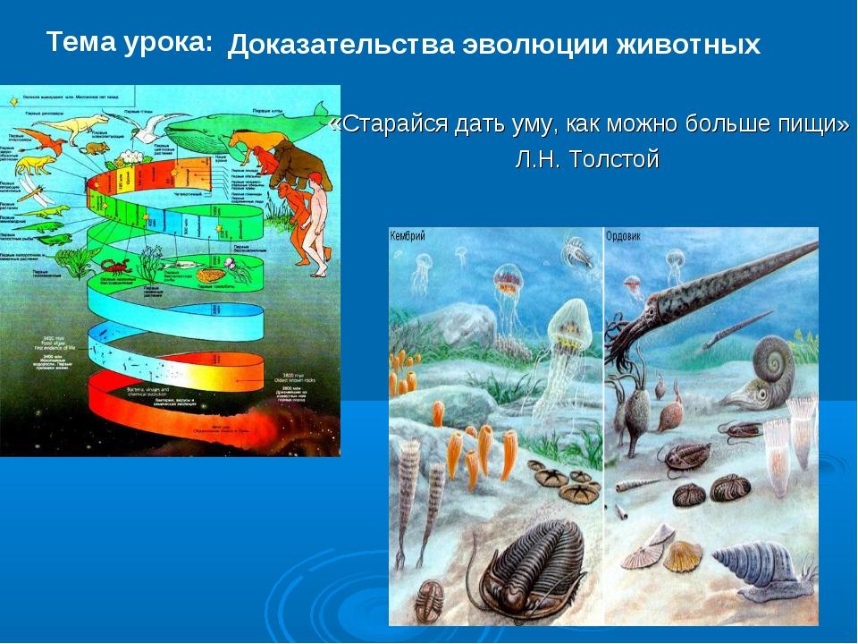 Доказательства эволюции животных Тема урока: «Старайся дать уму, как можно бо...