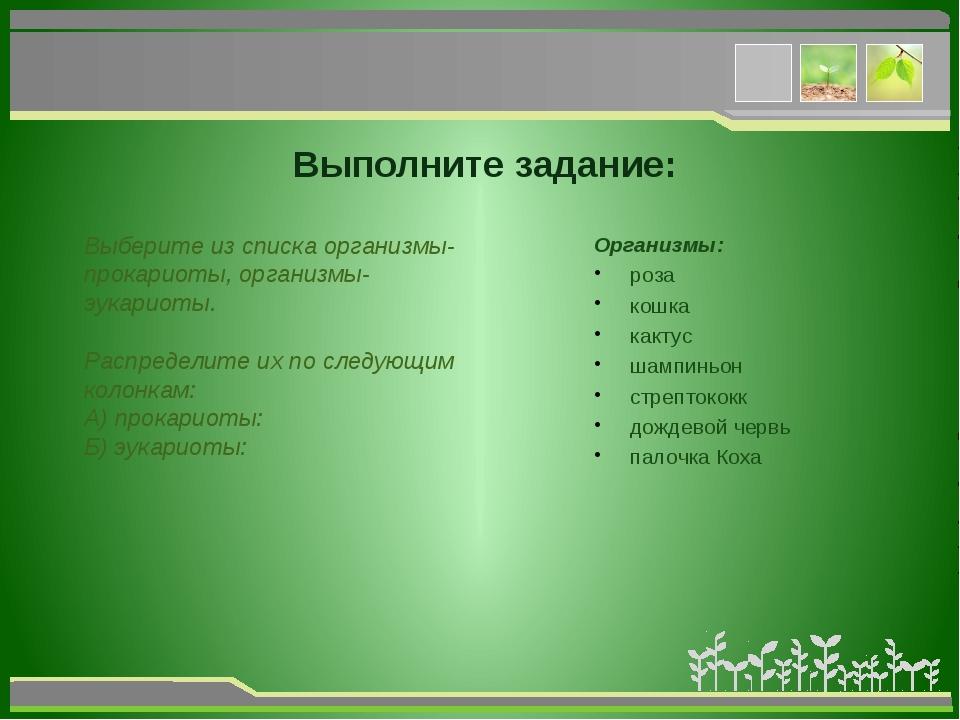 Выполните задание: Выберите из списка организмы-прокариоты, организмы-эукари...