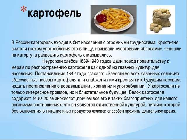 картофель В России картофель входил в быт населения с огромными трудностями....